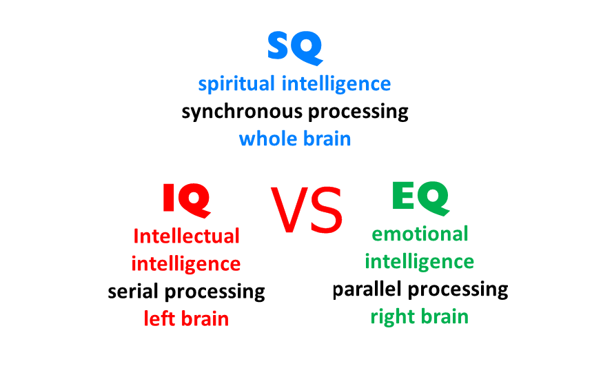 Difference Between IQ EQ And SQ
