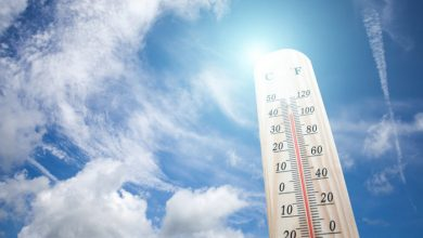 What Country Has the Greatest Temperature Difference Between its Northern and Southern Borders?