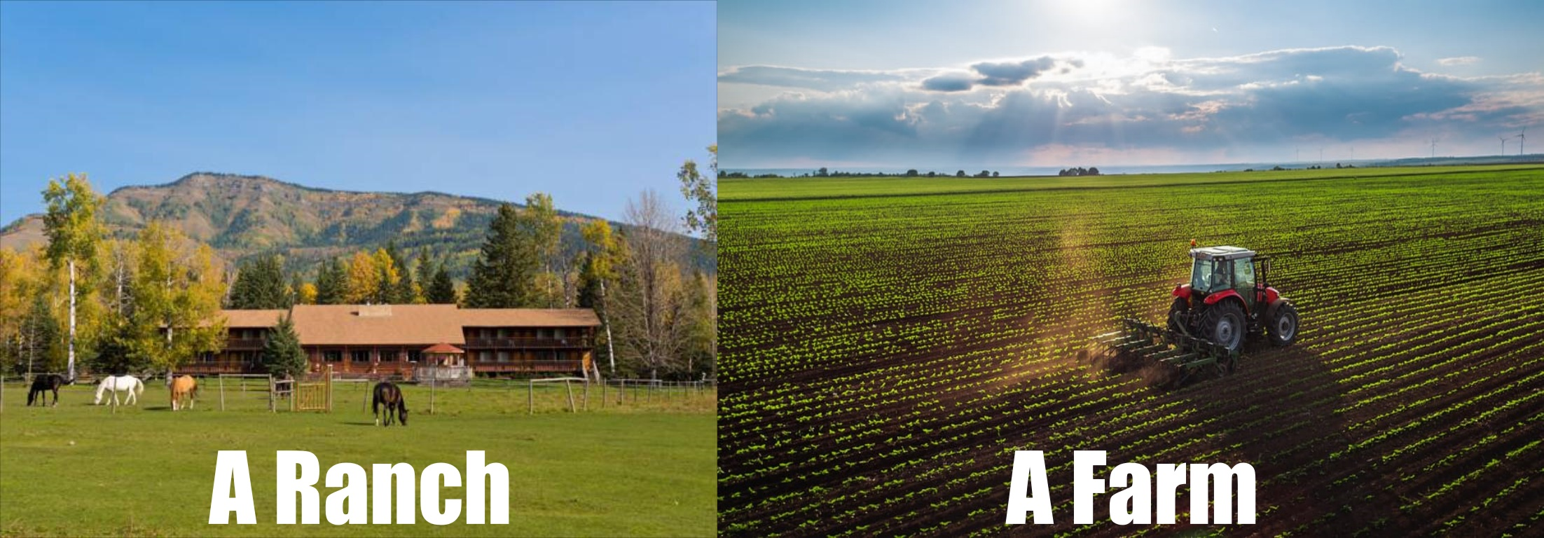 Difference Between a Ranch and a Farm